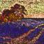 knusbaum