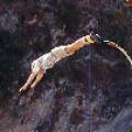 Hassan Schroeder