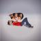 @azgoodaz