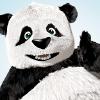 iMessage-Panda-sticker