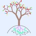 code-tree