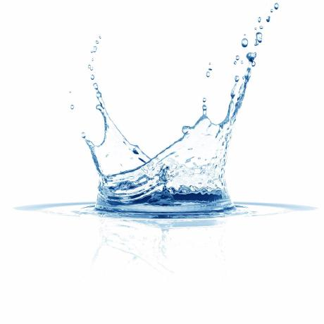 splashx
