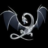 llir logo