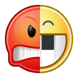 angr logo