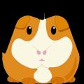 darthguinea