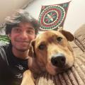 devslopes/pokeapi - Libraries io