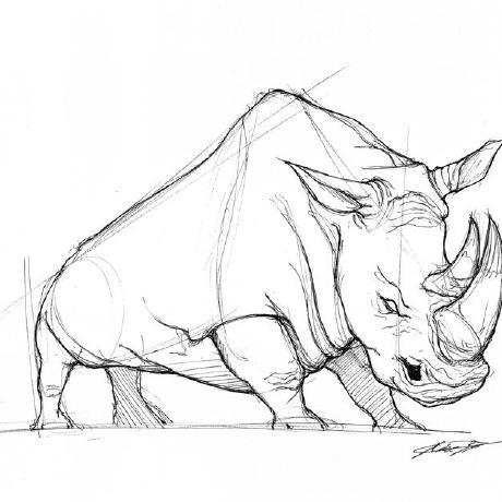 GitHub profile image of rhino88
