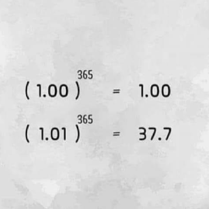 13241140?v=3