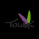TouK logo
