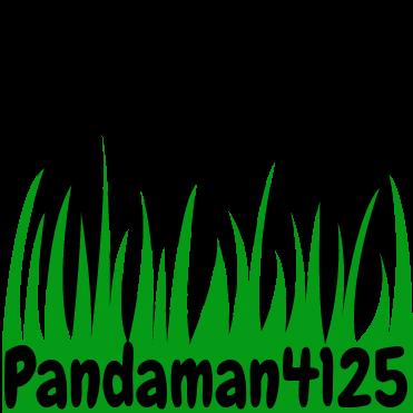 pandaman4125
