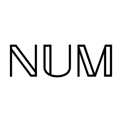 rust-num
