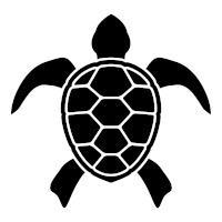 Typing Turtle profile image