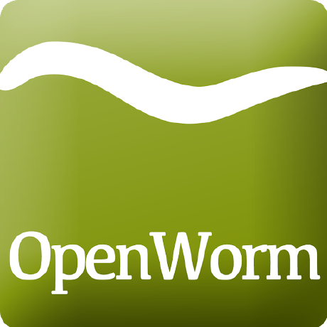 openworm's avatar