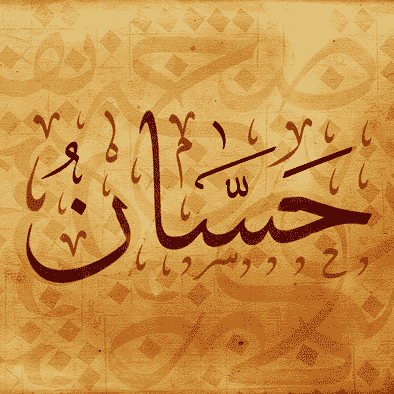 Hassaan Abdul Razzaq