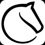 lichess-org logo