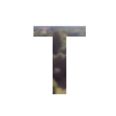 tyler58546