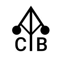 @cybernetisk