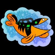 itsrachelfish
