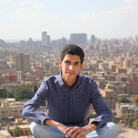 Amr A.Mohammed