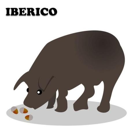 @iberianpig