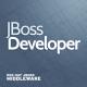 jboss-developer