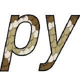 pybind logo
