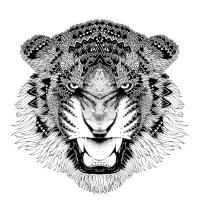 emacs-config