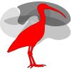 Ibis Neuronav
