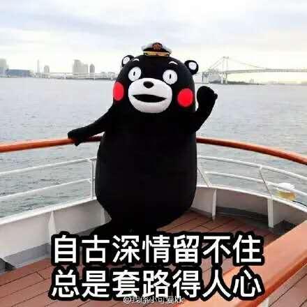 Yichen Lu's avatar