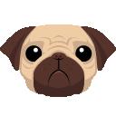 pug-php