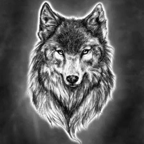 toxicwolf