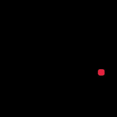 zoyalab, Symfony organization