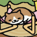 cat-bro