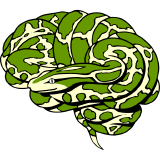 nipy logo