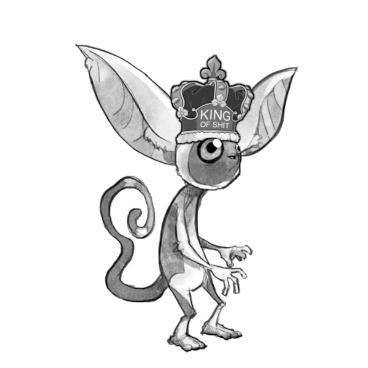 PokeMMO