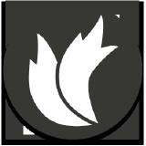 TwoTailsGames logo
