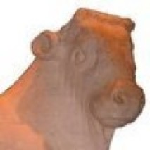Orangeaurochs