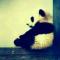 @yi-Xu-0100