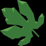pyeve logo