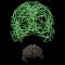@brain-network