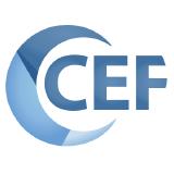 chromiumembedded logo