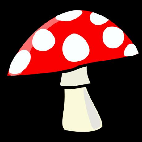 cuckoo-dma