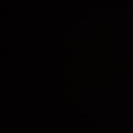 ohnukihiroshi