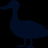 kwebio logo