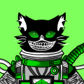Vipin Kumar Rawat