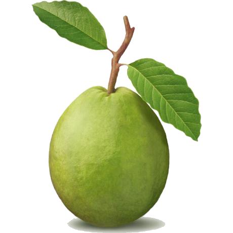 mightyguava