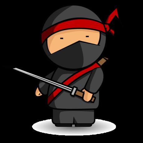 NinjaOfWeb