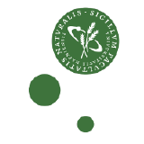 diku-dk logo
