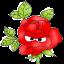 @viktoria-flowers