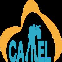@camel-dsl